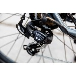 Athena Ηλεκτρικό Ποδήλατο 250W 36V 8 Ah